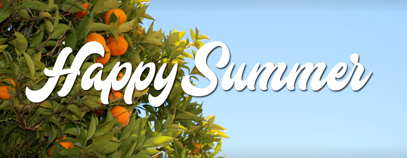 SummerBanner